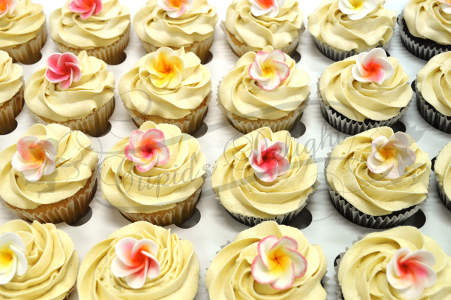 Colourful spring cupcakes
